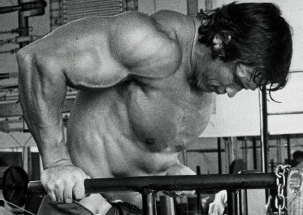 Arnold Schwarzenegger doing dips